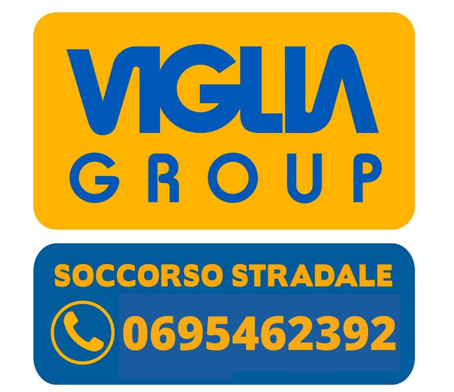rottamazione auto roma logo viglia group
